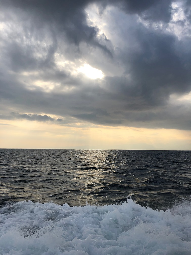 相模湾 海洋散骨